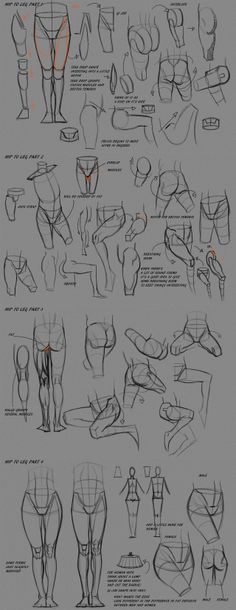 Learn To Draw People - The Female Body - Drawing On Demand Reference Manga, Figure Drawing Reference, Anatomy Reference, Anatomy Sketches, Anatomy Drawing, Anatomy Art, Human Anatomy, Drawing Legs, Body Drawing
