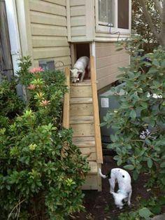 Hidden dog door
