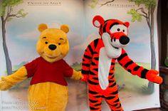 Winnie the Pooh and Tigger in Fantasyland