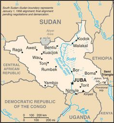 South Sudan Ethnic groups: Dinka 35.8%, Nuer 15.6%, Shilluk, Azande, Bari, Kakwa, Kuku, Murle, Mandari, Didinga, Ndogo, Bviri, Lndi, Anuak, Bongo, Lang...