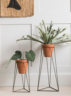 Jara Terracotta Plant Stand Two Sizes Available : Jara Terracotta Plant Stand Two Sizes Available at Rose & Grey. Buy online now from Rose & Grey, eclectic home accessories and stylish furniture for vintage and modern living Jara Terracotta Plant Bathroom Plants, Bathroom Colors, Faux Plants, Indoor Plants, Real Plants, Indoor Garden, Decorating Your Home, Interior Decorating, Decorating Ideas