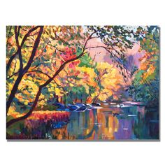 David Lloyd Glover 'Color Reflections' Canvas Art | Overstock.com Shopping - Top Rated Trademark Fine Art Canvas