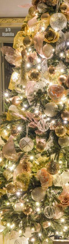 Christmas Night Tour by Kelley Nan