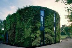 Vertical garden architecture.