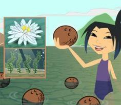 "Scholastic ""Plant Adaptations"" video explanation"