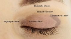 Hey Guys! So, I thought I would just briefly explain where eyeshadow goes on hooded eyes for a very basic look. It is very important to use ALL the real estate between your lash line and your brow …