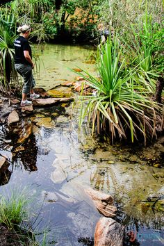 Beautiful Arnhem Land in the Northern Territory, Australia