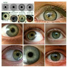 Eye Types of Spring Seasonal Analysis