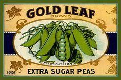 Olde America Antiques | Quilt Blocks | National Parks | Bozeman Montana : Vegetables - Gold Leaf Sugar Peas