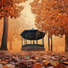 Enclosure autumn