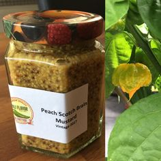 Scotch Brain is a beautiful chili and I had just 2 ripened and ready to be used. Ingredients: 3 pots of Dijon Mustard 200 ml each (the original) 2 scotch brain chilies 2 ripe peaches cut in cubes 3…
