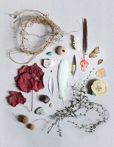 1000 Images About Photography Flat Lay Ideas On