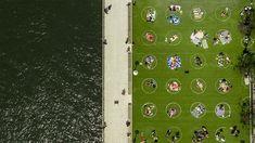 White circles promote social distancing on Domino Park grass in New York Design D'espace Public, Brooklyn, Commercial Complex, Astro Turf, Parking Design, White Chalk, Park City, Landscape Architecture, Landscape Design
