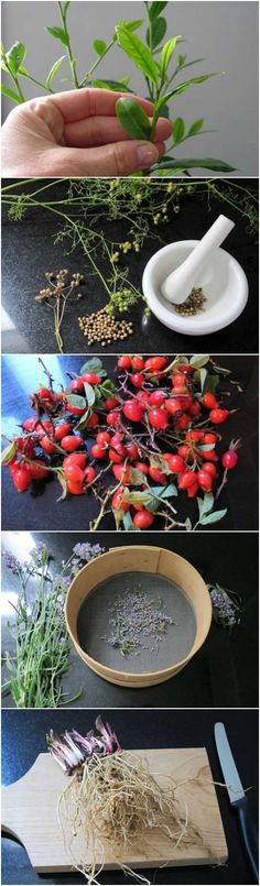 You can grow and make tea from leaves, seeds, fruit, flowers and roots. Here's how to do it!