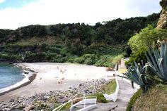 As melhores praias portuguesas www.terravista.pt800 × 536Pesquisar por imagens Praia de Água de Alto