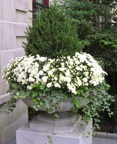Flores para Páscoa