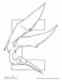 Worksheets: Dino E