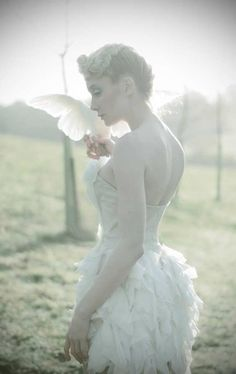 fashion, white, innocent, free, dove