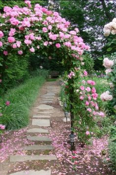 "Rose ""gate"""