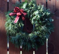 DIY from scratch christmas wreath with coat hanger....going to do this to have more full wreaths!