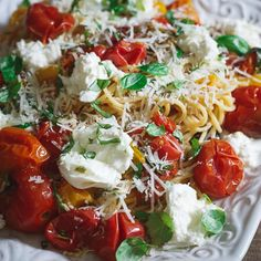 This pasta checca with burrata is an updated spin on a traditional family meal we've been eating for generations. Small burst heirloom tomatoes and burrata take tradition to the next level.