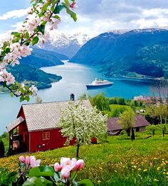 colour my world. Fjordane, Norway.