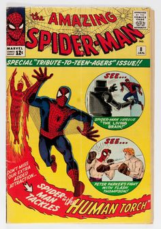 Silver Age (1956-1969): Superhero, The Amazing Spider-Man #8 (Marvel, 1964)