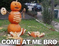 Vitamin-Ha – Funny Halloween (12 Pics)