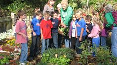 How are master gardeners making your community a happier, healthier place to be? http://blog.hgtvgardens.com/quick-and-dirty-what-it-really-means-to-be-a-master-gardener/?soc=pinterest