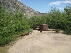 Lone Pine | Recreation.gov