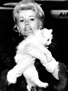 Zsa Zsa Gabor and cat