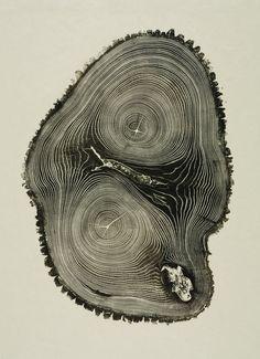 Woodcut: Bryan Nash Gill, Verlyn Klinkenborg: 9781616890483: Amazon.com: Books