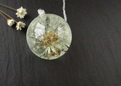 Dandelion Clock Necklace  Real Flower by ButtonsyJewellery on Etsy