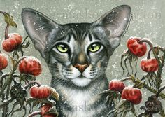 One of my cats and botanicals called Winter Rose Hips #cats #catart #botanicalart