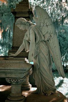 Cemetery Angel by debora
