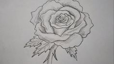 How to Draw a Rose - How to Draw Step by Step how to draw a rose step by step for kids, how to draw a rose step by step, how to draw a rose easy, how to draw a rose easily, how to draw a simple rose, rose drawings, steps on how to draw a rose, steps to draw a rose, how to draw roses step by step, drawing of roses, how to draw a rose step by step with pencil, how to draw a rose easy