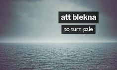 Words in Swedish
