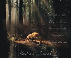 """At Your Feet Casting Crowns 
