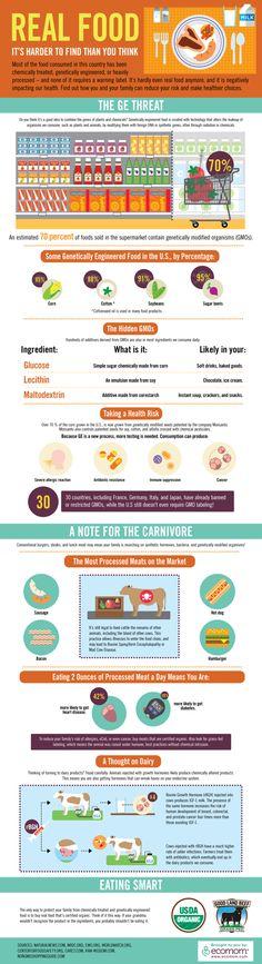 Fun Infographics | Alfalfa's