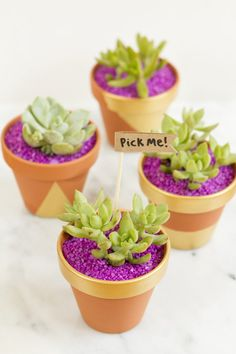 How to Make Mini-Planter Party Favors | eHow