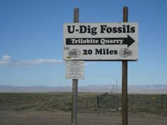 Once you get to Delta, travel 32 miles on SR-50/6. You'll see a U-Dig Fossils sign.