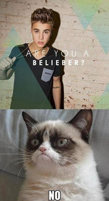 I love you Grumpy Cat! I hate you Justin Bieber!