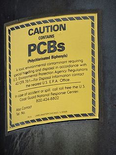 Banned PCBs, toxic chemicals still causing breast cancer years after being outlawed Bayer Ag, Seo Training, California City, Shocking Facts, In Law Suite, Clean Up, Breast Cancer, No Response, Liver Disease