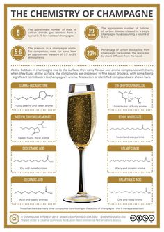 20 Million bubbles in a single champagne flute! The Chemistry of Champagne Science Chemistry, Food Science, Organic Chemistry, Science Room, Chemistry Classroom, Chemistry Teacher, Physical Science, Earth Science, Science Experiments