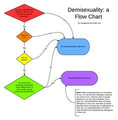What is a heteroromantic homosexual marriage