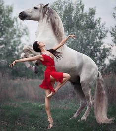 """A truly beautiful photo of ballet royalty and equine excellence. Principal dance… A truly beautiful photo of ballet royalty and equine excellence. Principal dancer Anastasia Limenko with the extraordinary Andalusian horse """"Brioso"""" Photo ©. Pretty Horses, Horse Love, Beautiful Horses, Animals Beautiful, Cute Animals, Ballet Beautiful, Horse Girl Photography, Dance Photography, Happy Photography"""