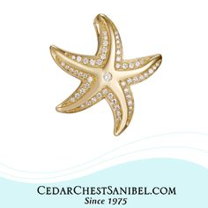 When you wish upon a star, a sandy beach can't be far. 🌞 14Kt Gold Starfish Pendant with Diamonds