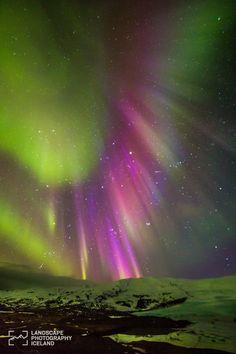 Aurora boreal en Hofn i Hornafirdi #Islandia
