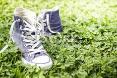 Sneakers on the grass Royalty Free Stock Photo