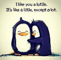 Cute :)